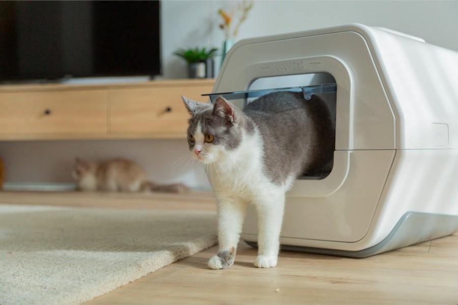 只要猫咪进入猫砂盆上厕所,APP就会搜集并记录猫咪的资讯。