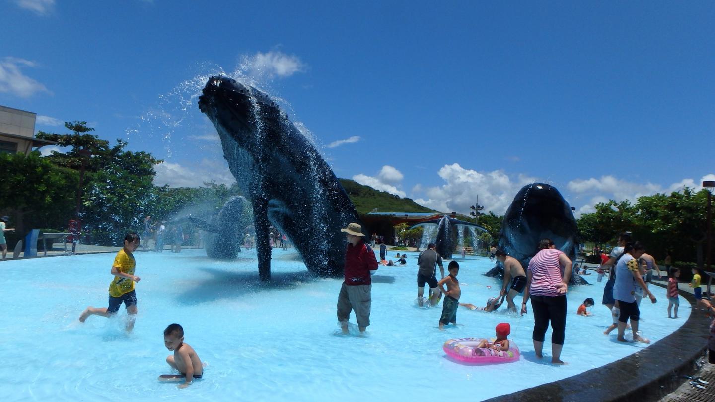游泳池的鲸鱼雕像很逼真